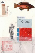 """""""All You Have is Colour"""" 2013"""