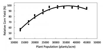 Corn seeding rate response curve