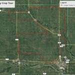 Dodge County Crop Tour – Mid July