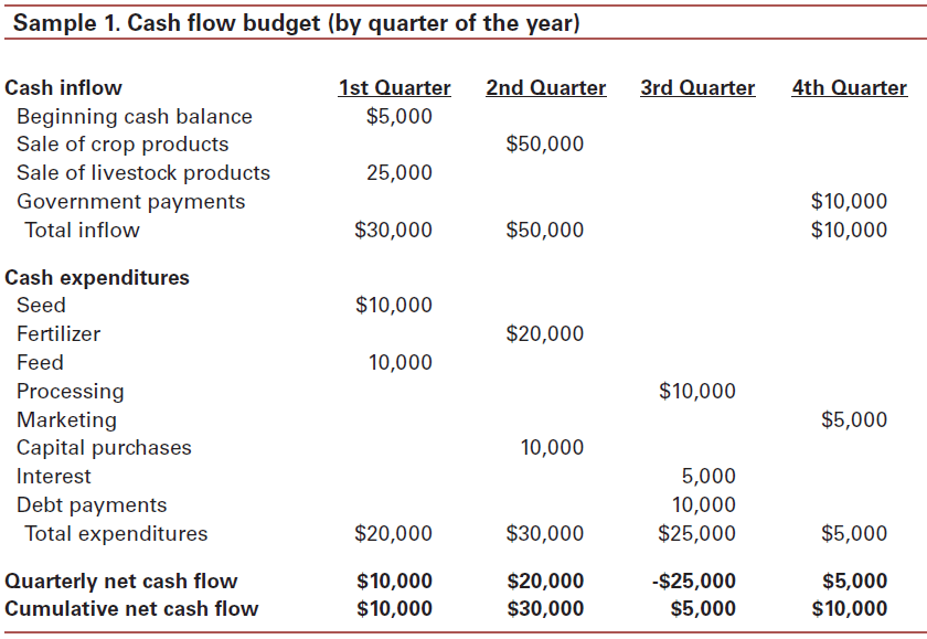 cash flow budget template