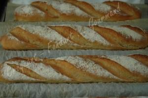 Baguettes Monge au levain Kayser DSC_9362_17865