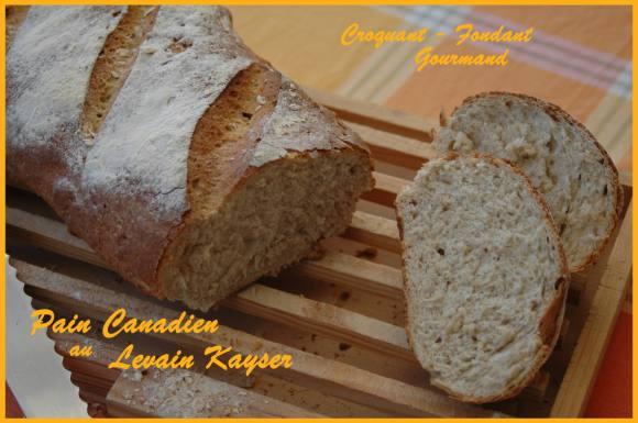 Pain canadien au levain Kayser - aout 2008 042 copie