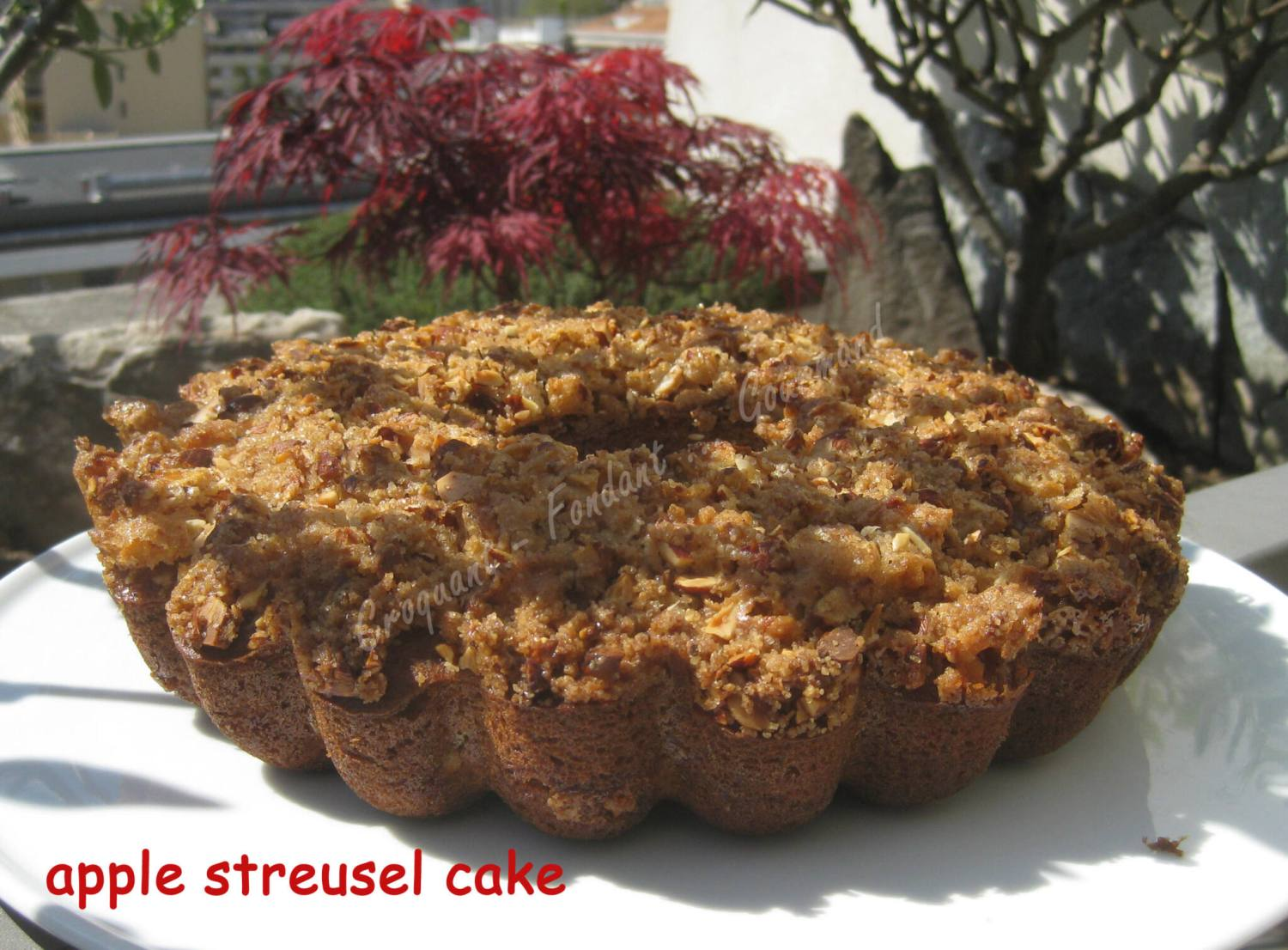 apple streusel cake IMG_5310_32875