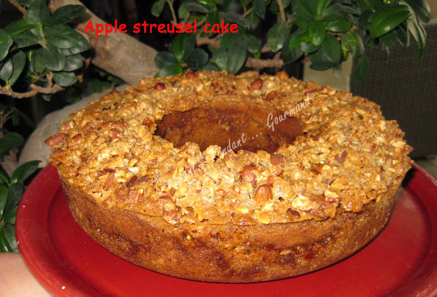 apple streusel cake -fevrier 2009 040 copie