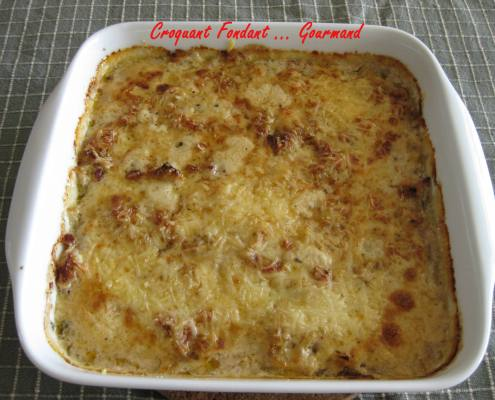 Gratin d'endives -fevrier 2009 047 copie