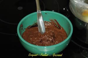 Mousse choco-crème - aout 2009 052 copie