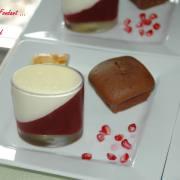 Panna cotta au chocolat blanc et à la framboise-Fondants Framboise - septembre 2009 207 copie