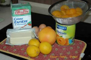 Régal aux abricots - octobre 2009 024 copie