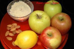 Tarte grillagée aux pommes - DSC_3017_526