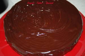 Marbré chocolat-citron - DSC_4178_1761
