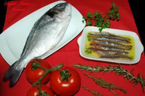 Daurade Maltaise - DSC_5508_3088