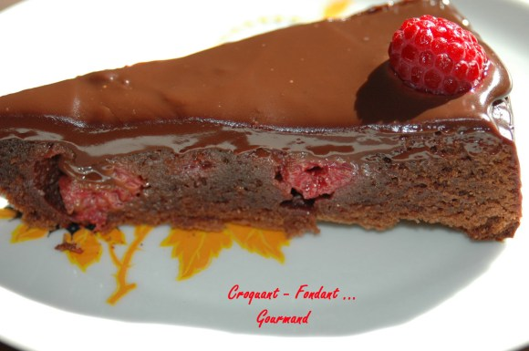 Chocolat-framboises de Pierre hermé - DSC_9807_7792
