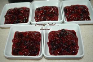Papillote de fruits rouges à la crème de cassis - DSC_0788_8744