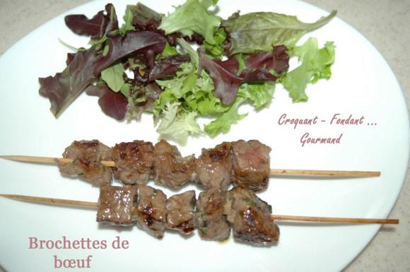 Brochettes de bœuf - DSC_1894_9818