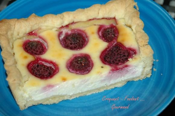 Cheesecake aux framboises - DSC_2181_10101