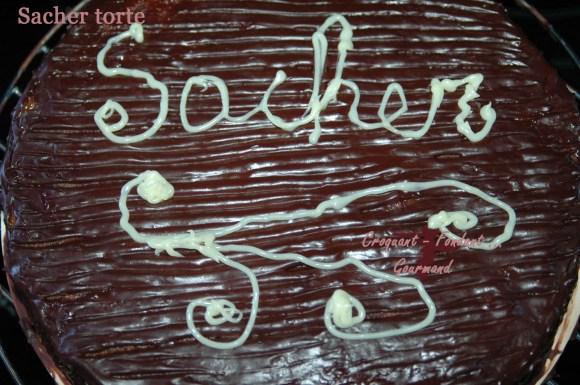 Sacher torte - DSC_2121_10042