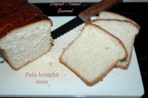 Pain brioché coco - DSC_2844_11002