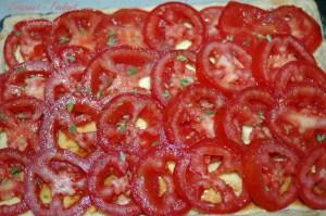 Tarte fromagère aux tomates -DSC_2553_10713