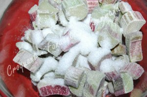 Tarte meringuée à la rhubarbe - DSC_8448_16956