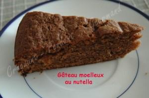 Gâteau moelleux au nutella - DSC_0137_18635