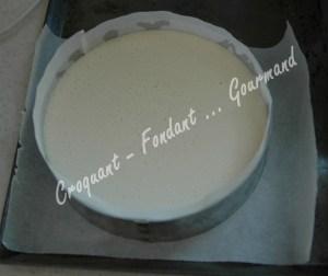 Cheesecake aux framboises - DSC_0243_18741