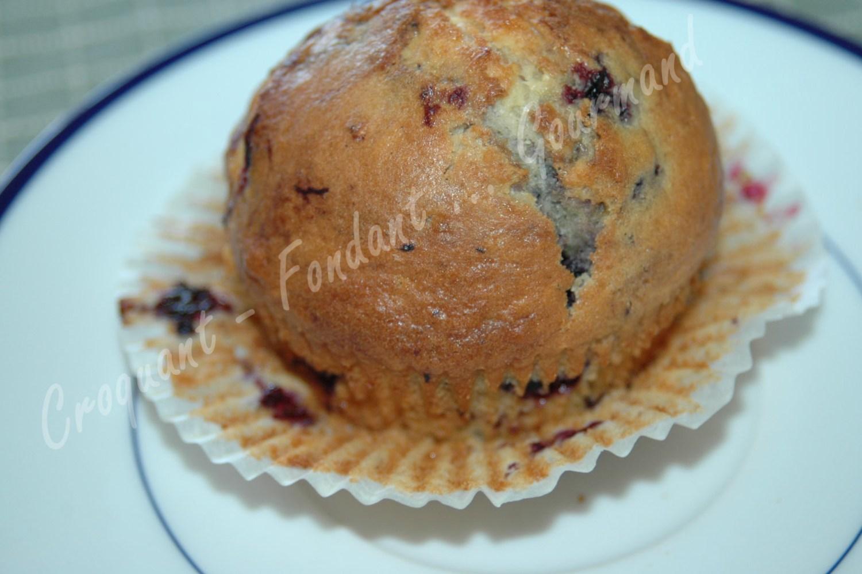 Muffins myrtilles-framboises - DSC_8902_17408