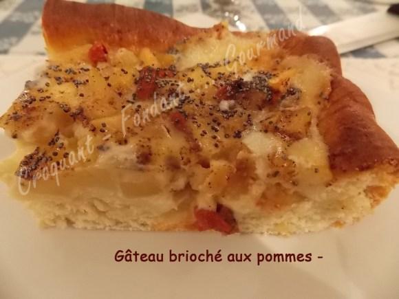 Gâteau brioché aux pommes -DSCN0835_20110