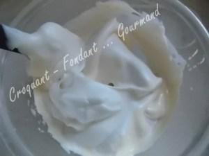 Nougat glacé rose  DSCN1006_20278