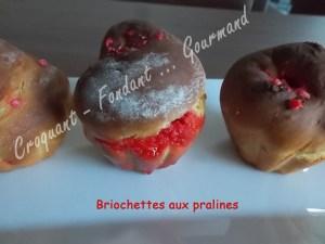 Briochettes aux pralines DSCN1388_20658
