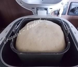 Pizza parmesane DSCN1040_20311