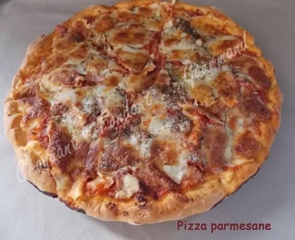 Pizza parmesane DSCN1052_20323