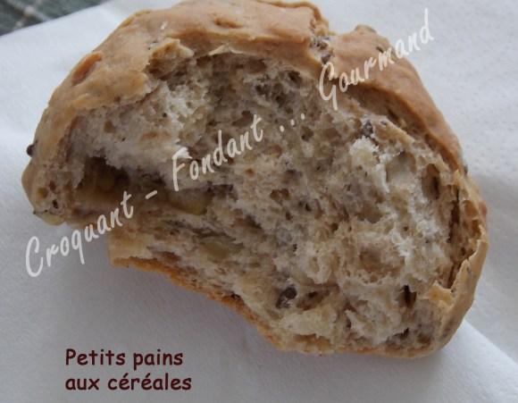 Petits pains aux céréales - DSCN0872_20145