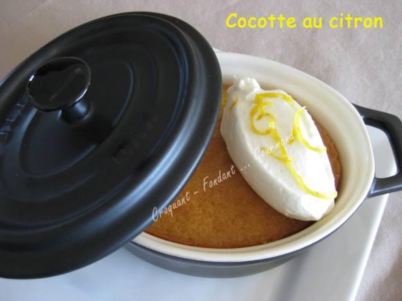 Cocotte au citron IMG_4768_23851
