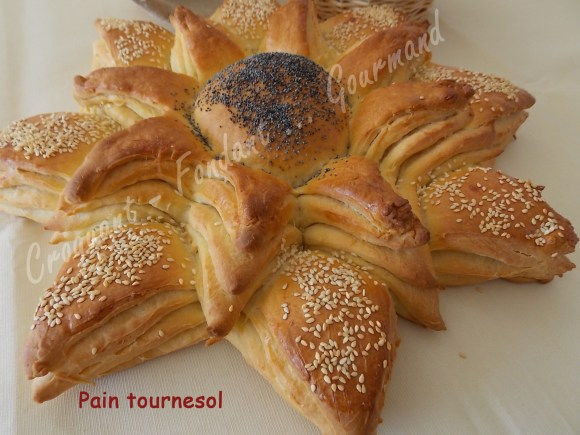 Pain tournesol DSCN4094_24028