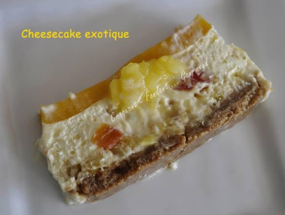 Cheesecake exotique _DSC0320_25224