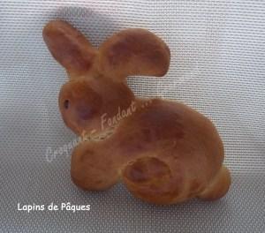Lapins de Pâques DSCN5117_25106