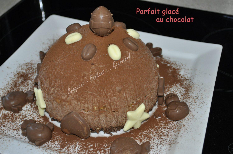 Parfait glacé au chocolat _DSC0309_25236