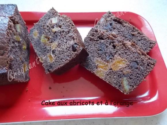 Cake aux abricots et à l'orange DSCN4817_24794