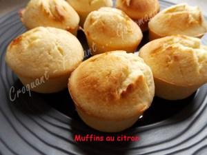 Muffins au citron DSCN5465_25521