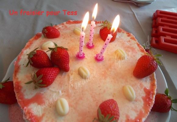 Un fraisier pour Tess DSCN6311_26404