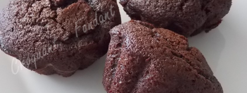 Tendres moelleux au chocolat DSCN7082_27201