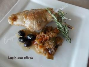 Lapin aux olives DSCN8227_28403