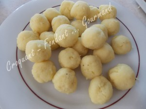 Pommes noisettes DSCN8468_28644