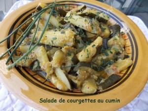 Salade de courgettes au cuminDSCN8119_28295
