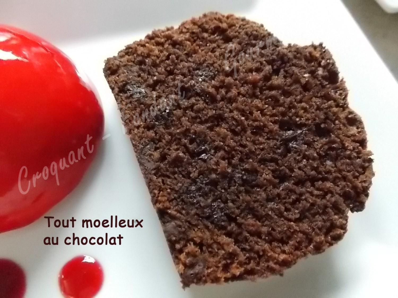 Tout moelleux au chocolat DSCN7810_27986