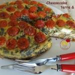 Cheesecake terre & mer DSCN0138_29676