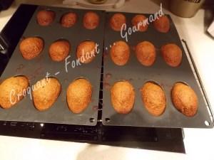 Petits pains d'épices DSCN1029_30567
