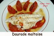 Daurade Maltaise Index - DSC_5530_3110
