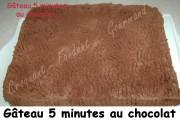 Gâteau 5 minutes au chocolat Index - DSC_7095_15488