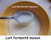 Lait fermenté maison Index DSCN4403_34857